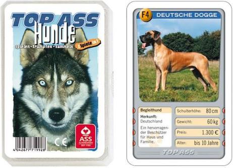 Hunde Tier - Quartett TOP ASS 71992
